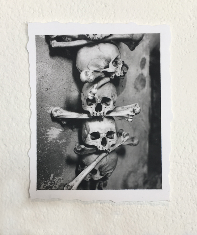 http://www.linseygosper.com/files/gimgs/38_skull-edit800px.jpg